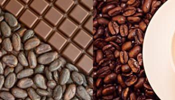 Кофе или какао? Что лучше и что полезнее?