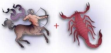 Совместимость знаков Скорпион Стрелец в любви, сексе и дружбе