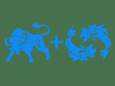 Совместимость знаков Телец Рыбы в любви, сексе и дружбе