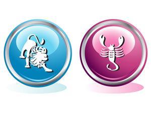 Совместимость знаков Скорпион Лев в любви, сексе и дружбе