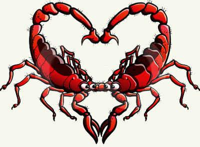 Совместимость знаков Скорпион Скорпион в любви, сексе, дружбе и работе