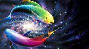 Совместимость знаков Рыбы + Рыбы в любви, дружбе и работе