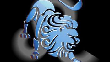 Совместимость знаков Лев + Лев в любви, дружбе и работе