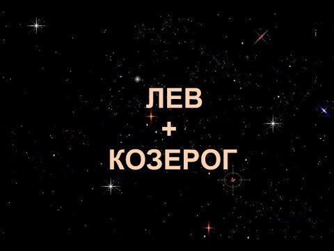 Совместимость знаков Козерог + Лев в любви и дружбе