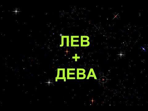 Совместимость знаков Лев + Дева в любви и дружбе