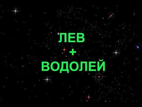 Совместимость знаков Лев + Водолей в любви и дружбе