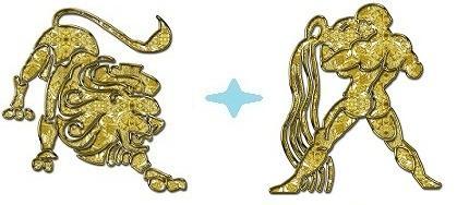 Совместимость знаков Лев Водолей в любви, сексе и дружбе