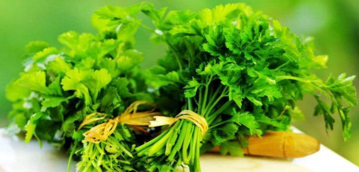 10 видов зелени, которую можно посадить на грядке