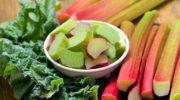Ревень — польза для организма, плюсы и минусы продукта, а также вкусные рецепты