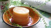 Все о комбуче (чайный гриб) — польза для организма и вкуснейшие рецепты