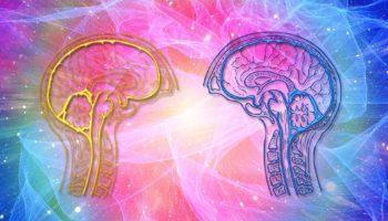 Эмоциональный интеллект: что это такое, развитие эмоционального интеллекта, а также тест на EQ